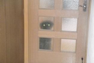 リビングのドアのむこうがわで目がきらーん