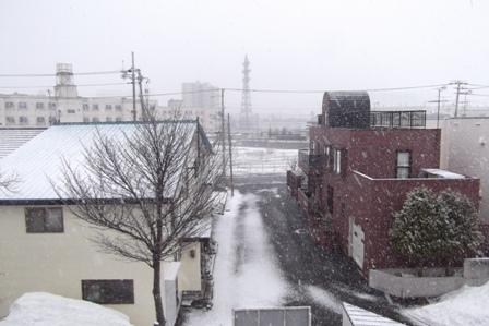 それなのに、今朝、また雪…