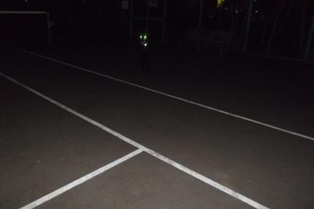 夜のテニスコート、光るアルマくんの目