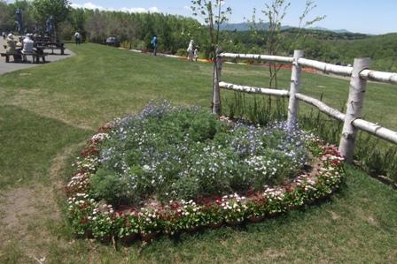ハート型の花壇