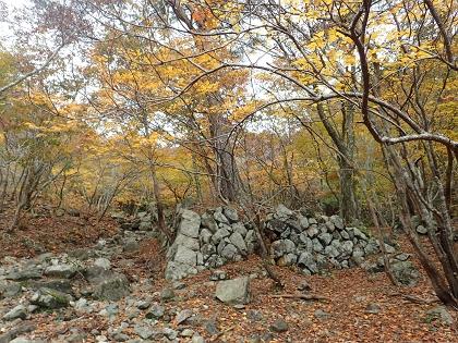 20141026雨乞岳10