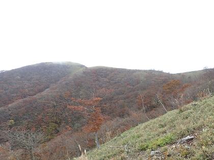 20141026雨乞岳14