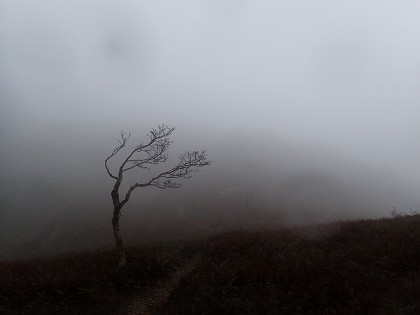 20141103三重嶽03