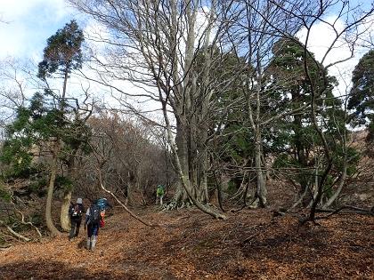 20141116大御影山03