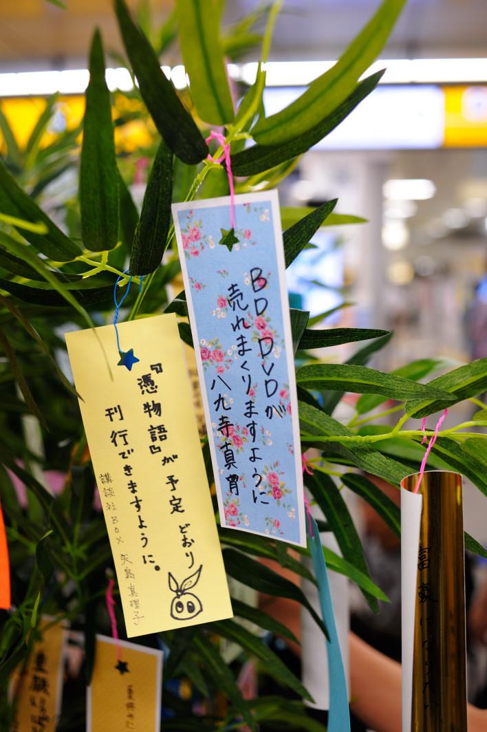 201120707_1_akiba_001.jpg