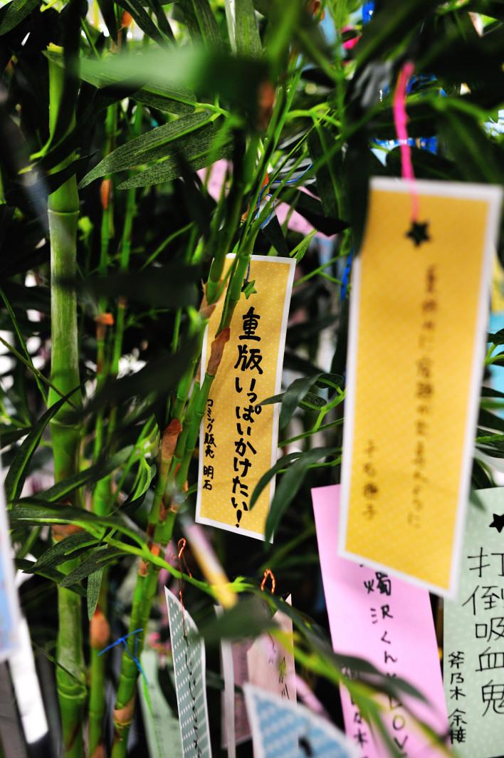 201120707_1_akiba_003.jpg