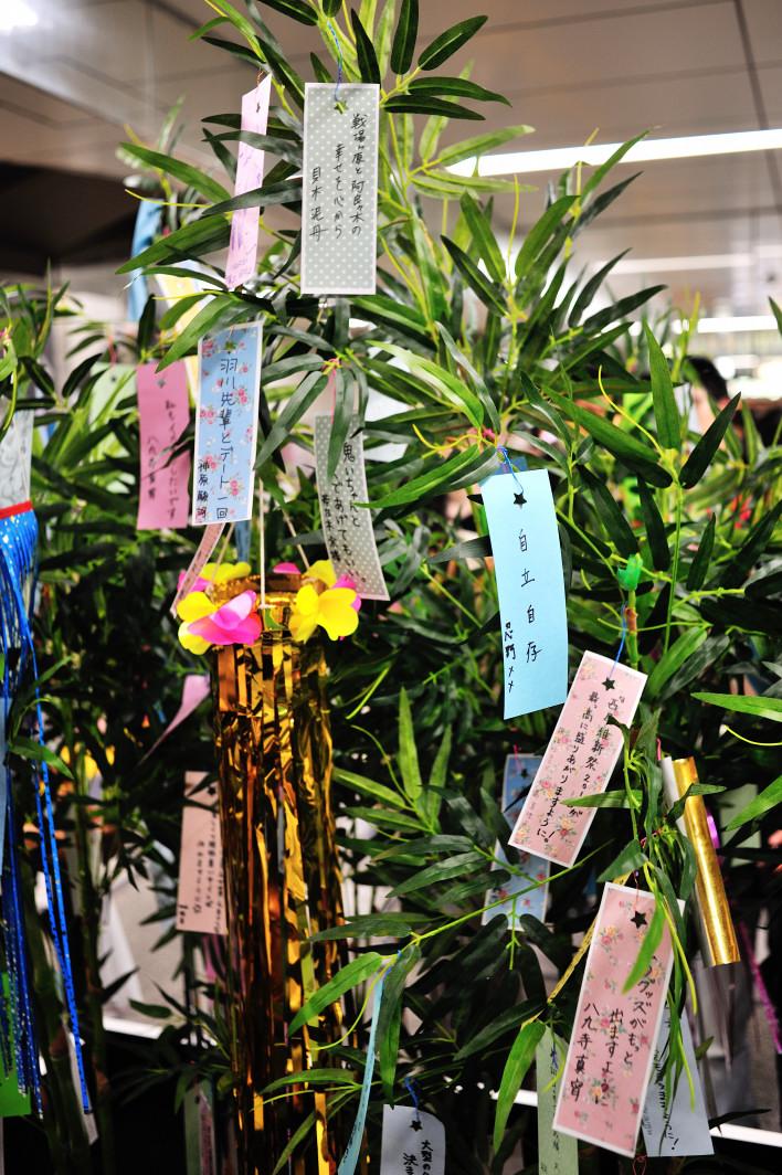 201120707_1_akiba_012.jpg