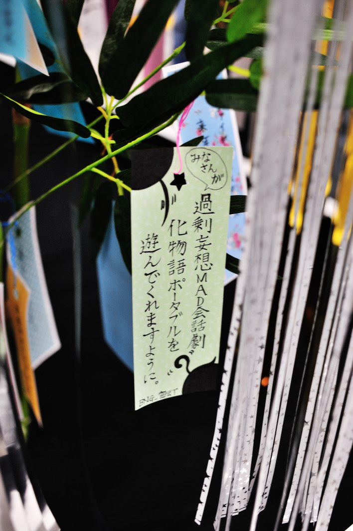 201120707_1_akiba_015.jpg