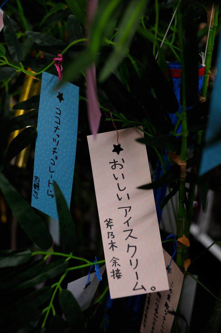 201120707_1_akiba_016.jpg