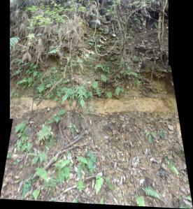 地盤P9230029_stitch砂礫