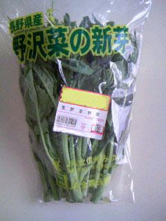 野沢菜の新芽2