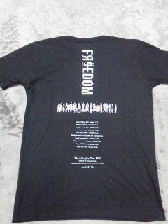 theHIATUS2012ライブツアーTシャツ2
