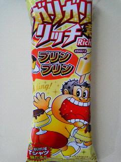 ガリガリ君リッチ プリンプリン (1)