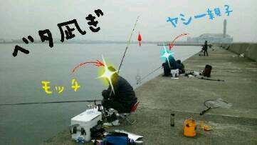 img20130329_151554.jpg
