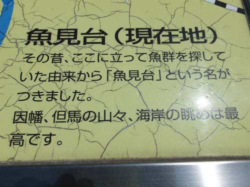 DSCF6448.jpg