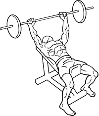 Incline-bench-press-1.png