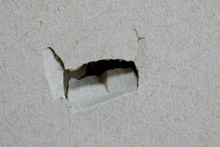 壁ですー3-3-223