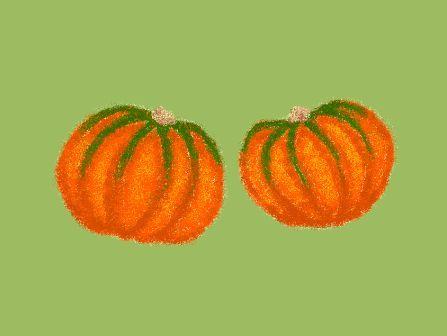 *ミニかぼちゃ