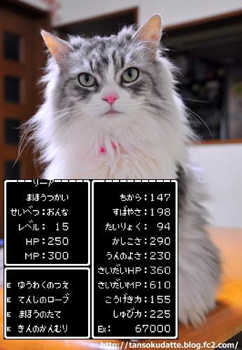 DSC_8065.jpg