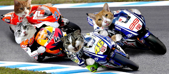 MotoGP-3Nyan-header17.jpg