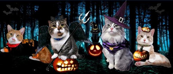 halloween2012-600.jpg