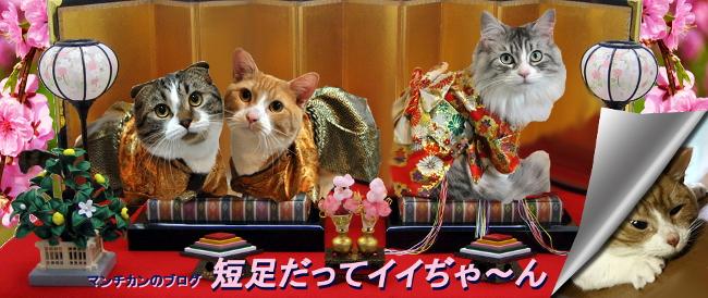 hinamatsuri-headerH.jpg