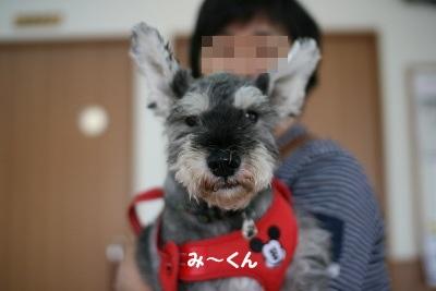 狂犬病 4