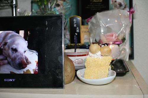 一歳のお誕生日2