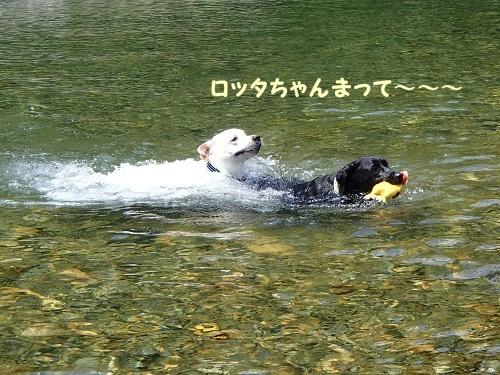13 5川遊び6