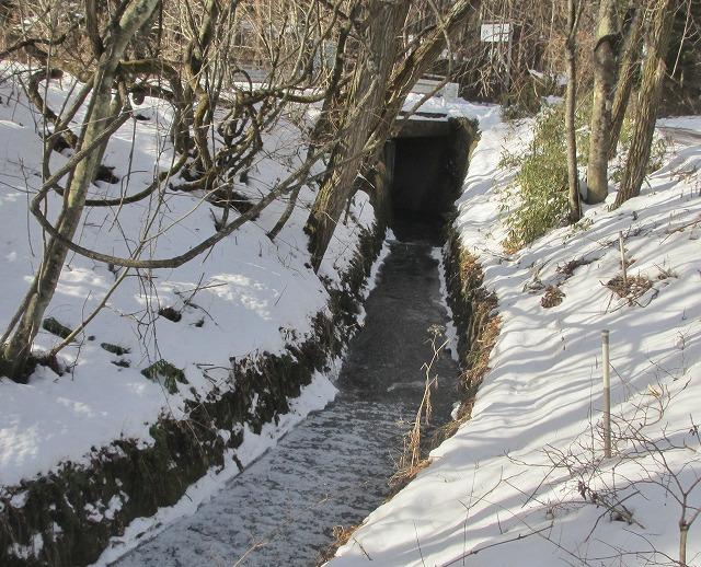 20130106悠心荘の用水路が凍る (3)