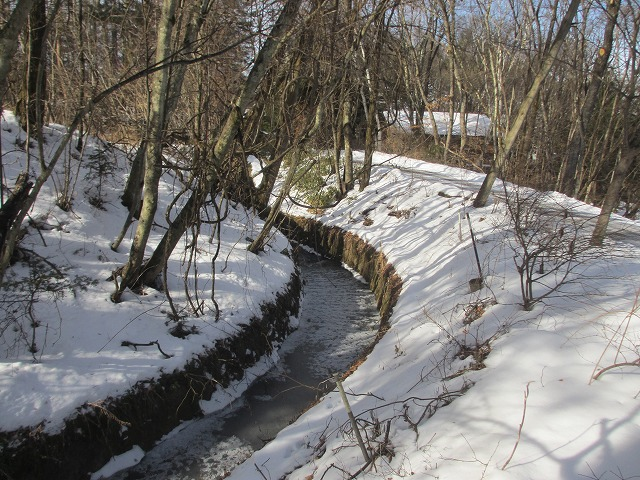 20130106悠心荘の用水路が凍る (2)