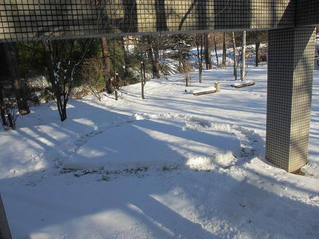 20121229悠心荘の庭の雪でハート (5)