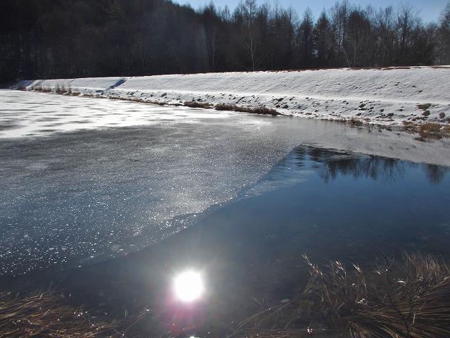 20121220みしゃか池 (16)