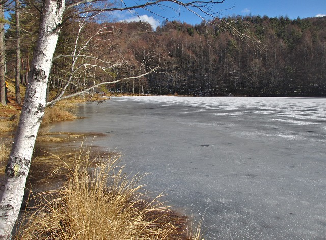 20121220みしゃか池 (18)