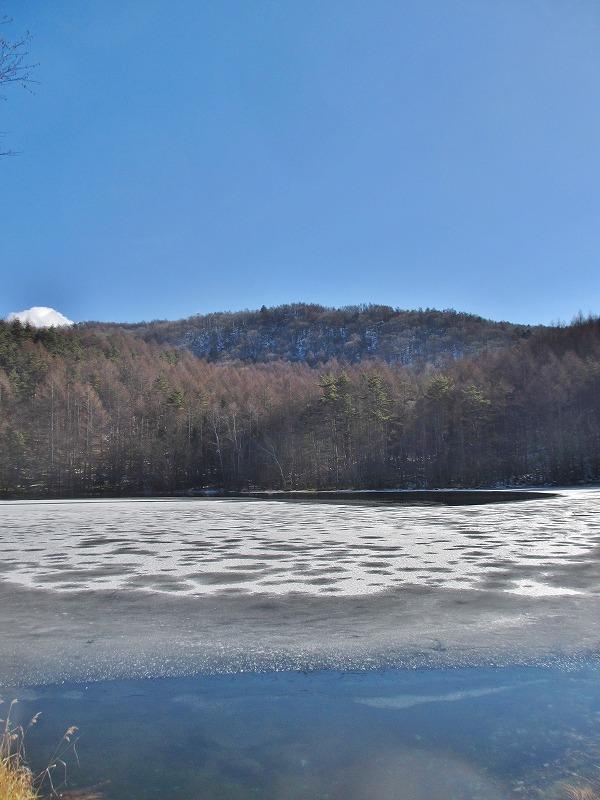 20121220みしゃか池 (15)