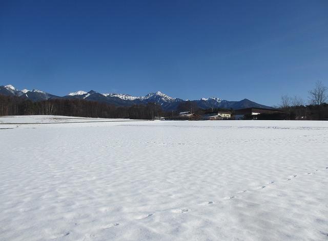 20130108雪原と八ヶ岳 (1)