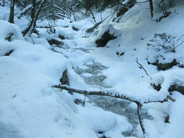 20130110滝へ4(川)
