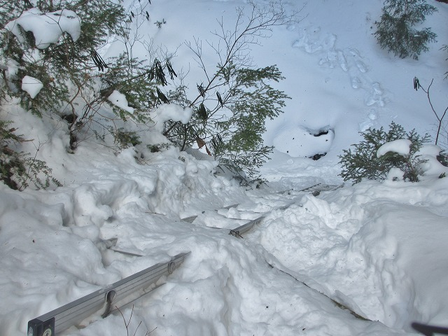 20130110滝へ9 ハシゴ