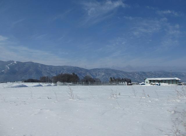 20130116風紋 (4)