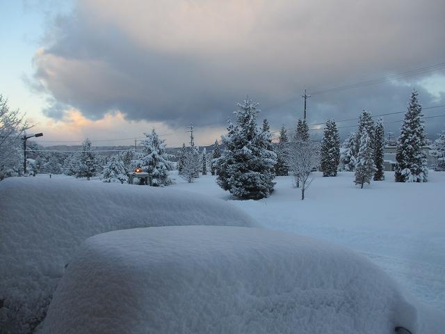 20130213大雪だったね (5)