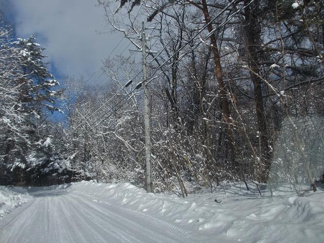 20130216悠心荘の大雪の朝 (1)