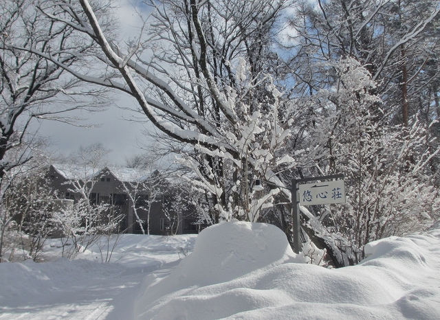 20130216悠心荘の大雪の朝 (5)