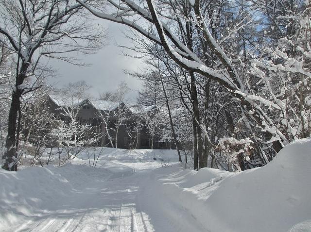 20130216悠心荘の大雪の朝 (7)