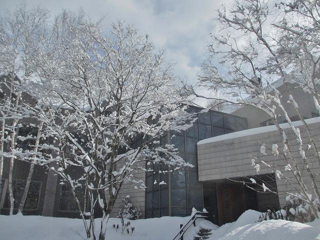 20130216悠心荘の大雪の朝 (9)