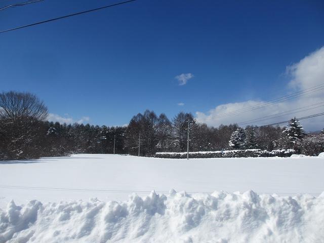 20130216悠心荘の大雪の朝 (10)