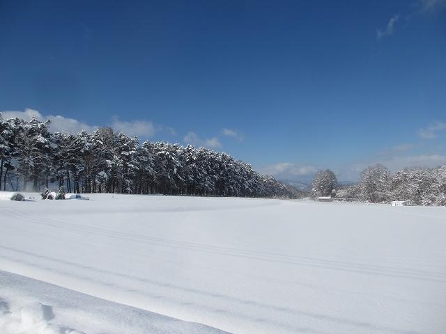 20130216雪明けの悠心荘周辺 (1)