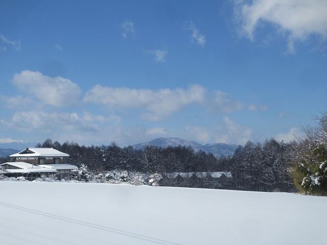 20130216雪明けの悠心荘周辺 (4)
