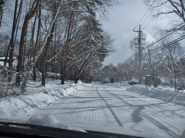 20130216雪明けの悠心荘周辺 (9)