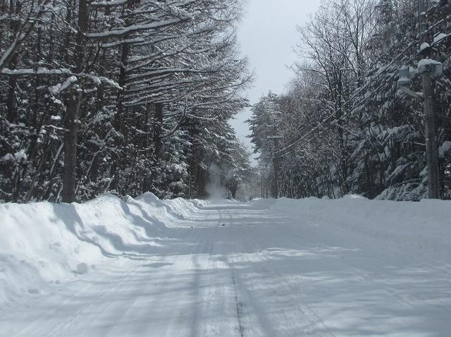 20130216雪明けの悠心荘周辺 (6)