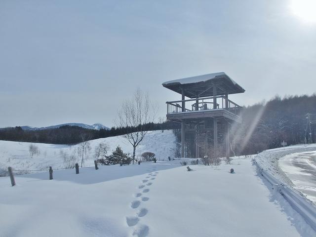 20120217長門牧場と道路風景 (13)